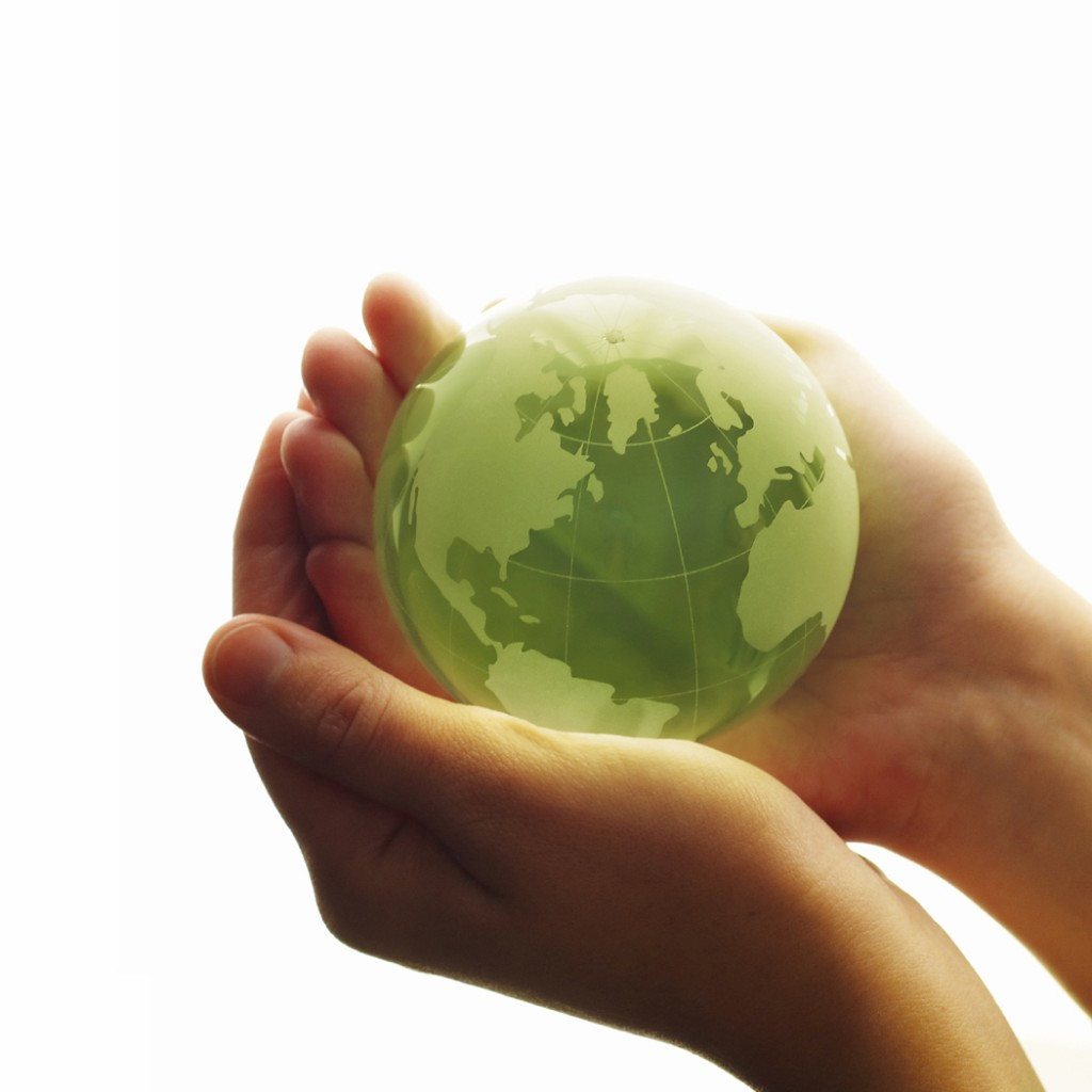 Green On environmental policy